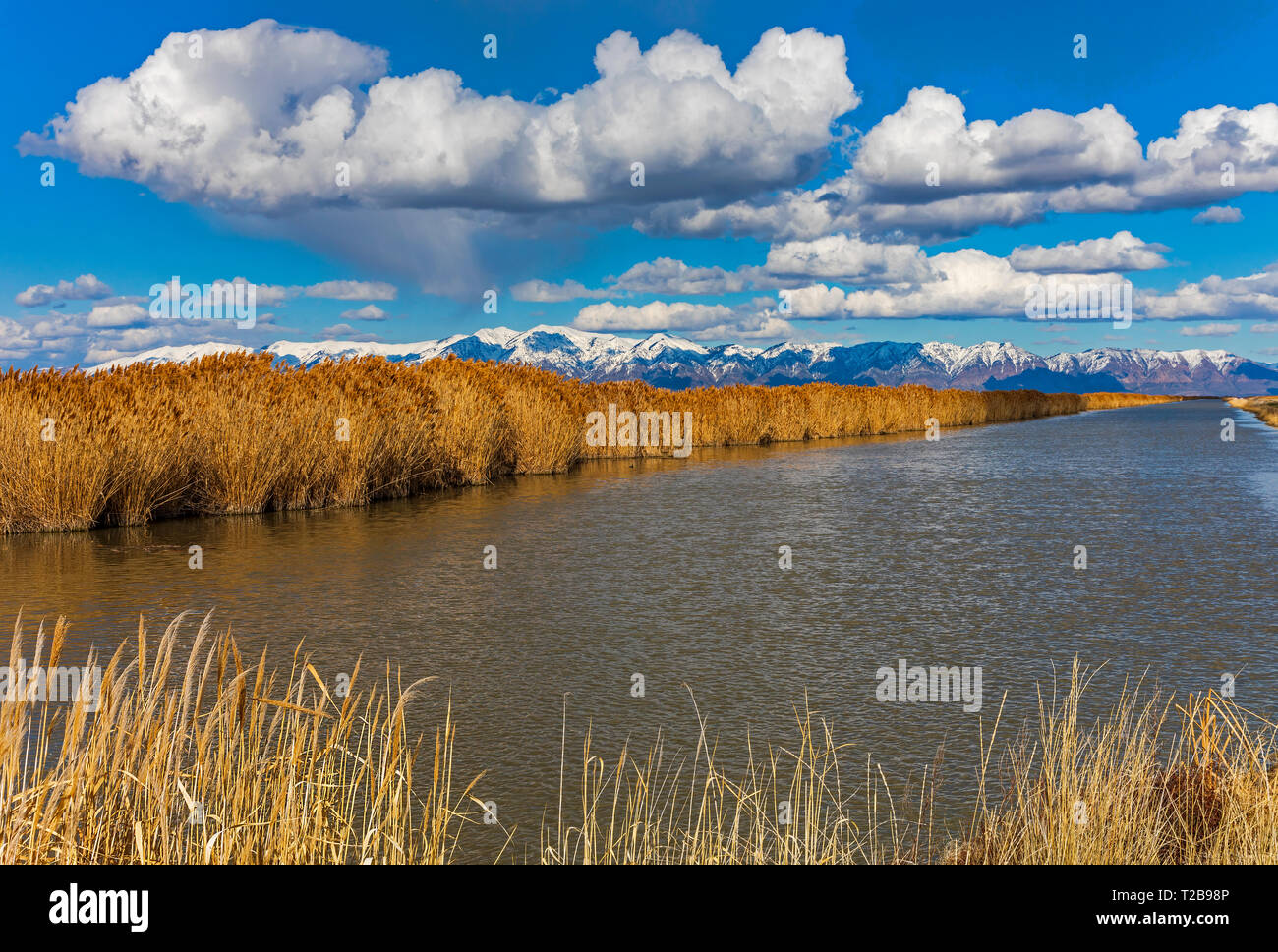 This is a view looking east up the Bear River channel on a beautiful springtime day at the Bear River Migratory Bird Refuge near Brigham City, Utah. - Stock Image