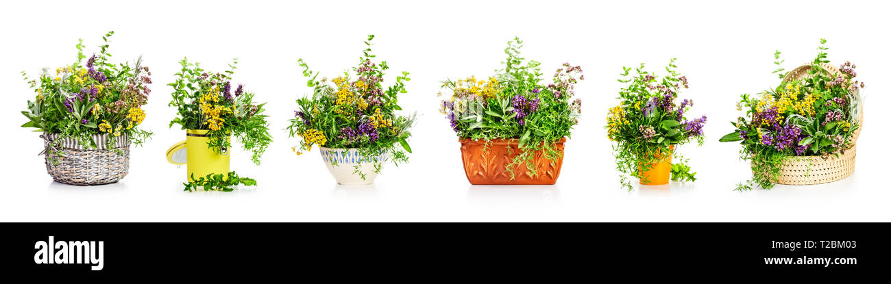 127 & Garden herbs and flowers in different kitchen containers and flower ...