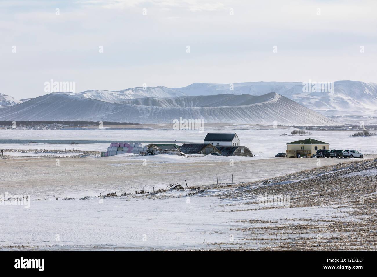 Myvatn, Nordurland Eystra, Iceland, Europe - Stock Image