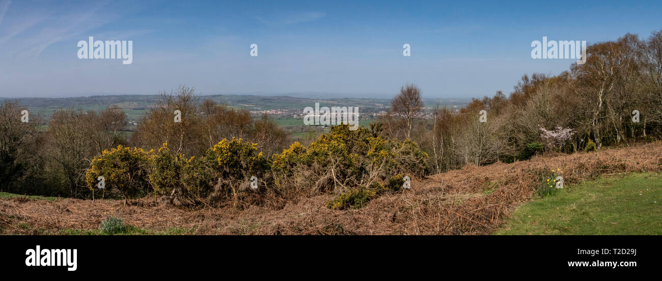 View over the Otter Valley towards Ottery St Mary from the East Hill Strips,Devon - Stock Image