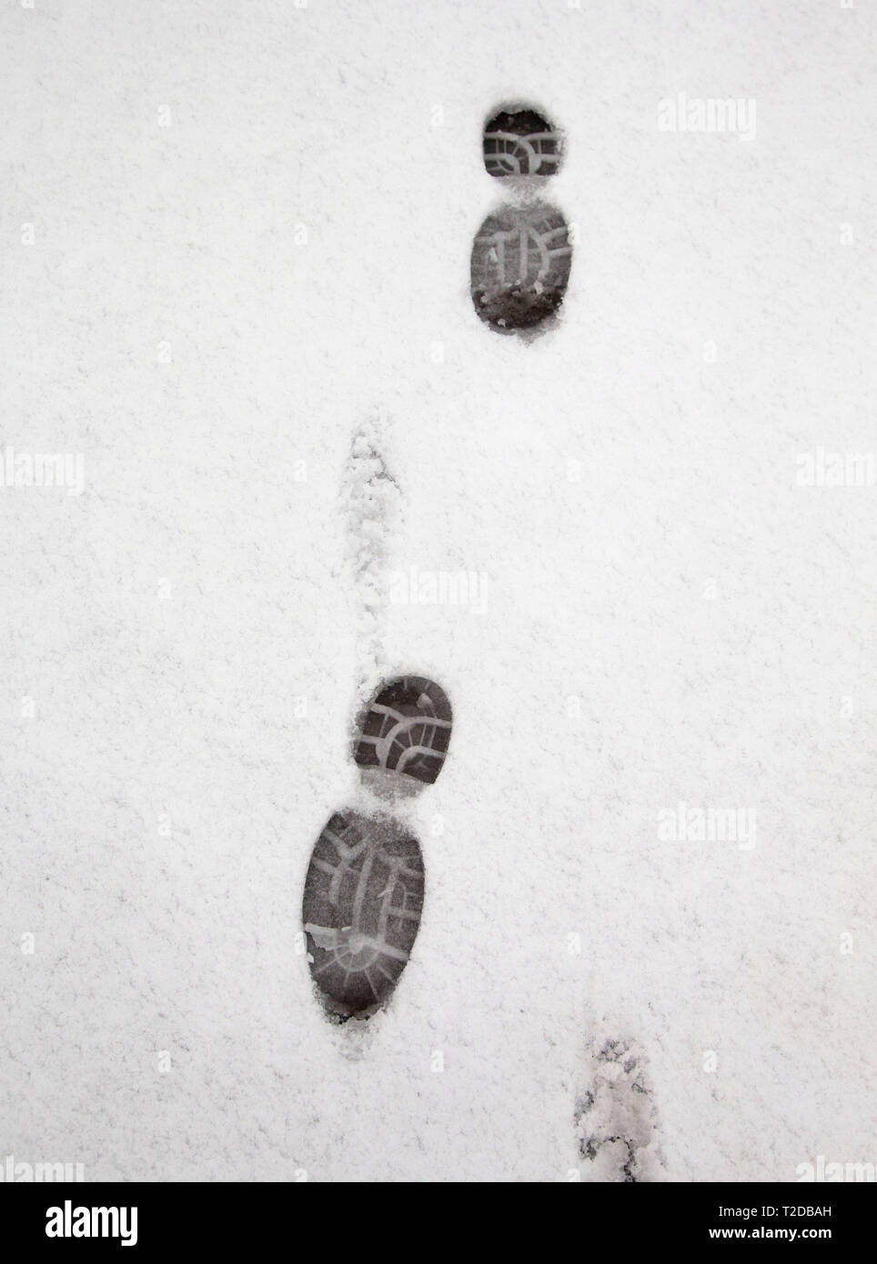 Snow tracks in snow. - Stock Image
