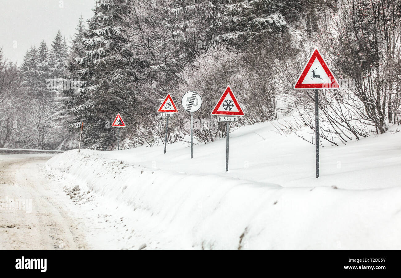 Row of warning roadsign on dangerous part of forest road, during winter blizzard. Caution - deers, snow, skids and falling rocks. - Stock Image