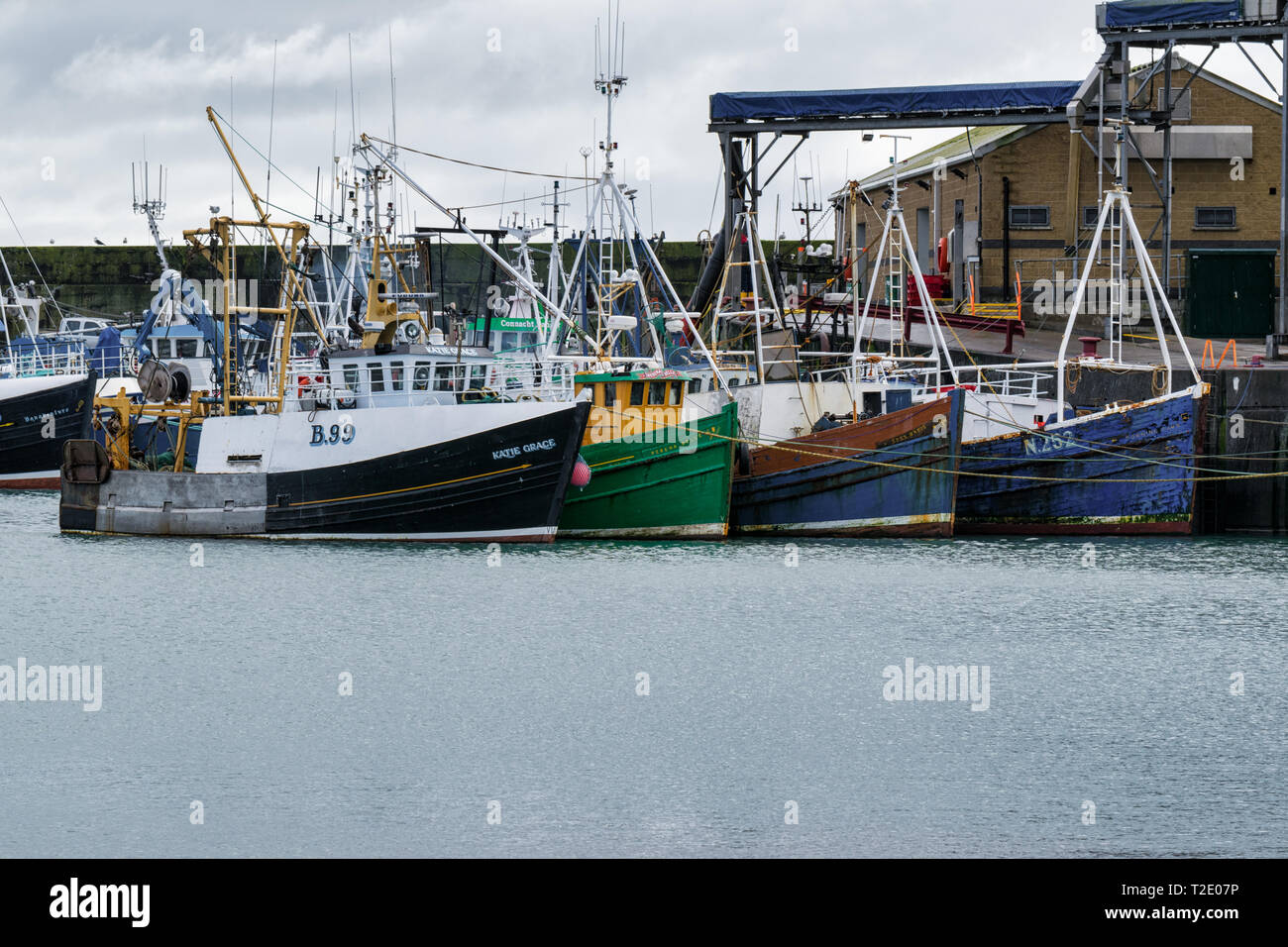 Ardgalss, Northern Ireland -  March 17, 2019 : This is a picture of Ardglass harbour and its fishing boat  fleet  in County Down, Northern Ireland - Stock Image