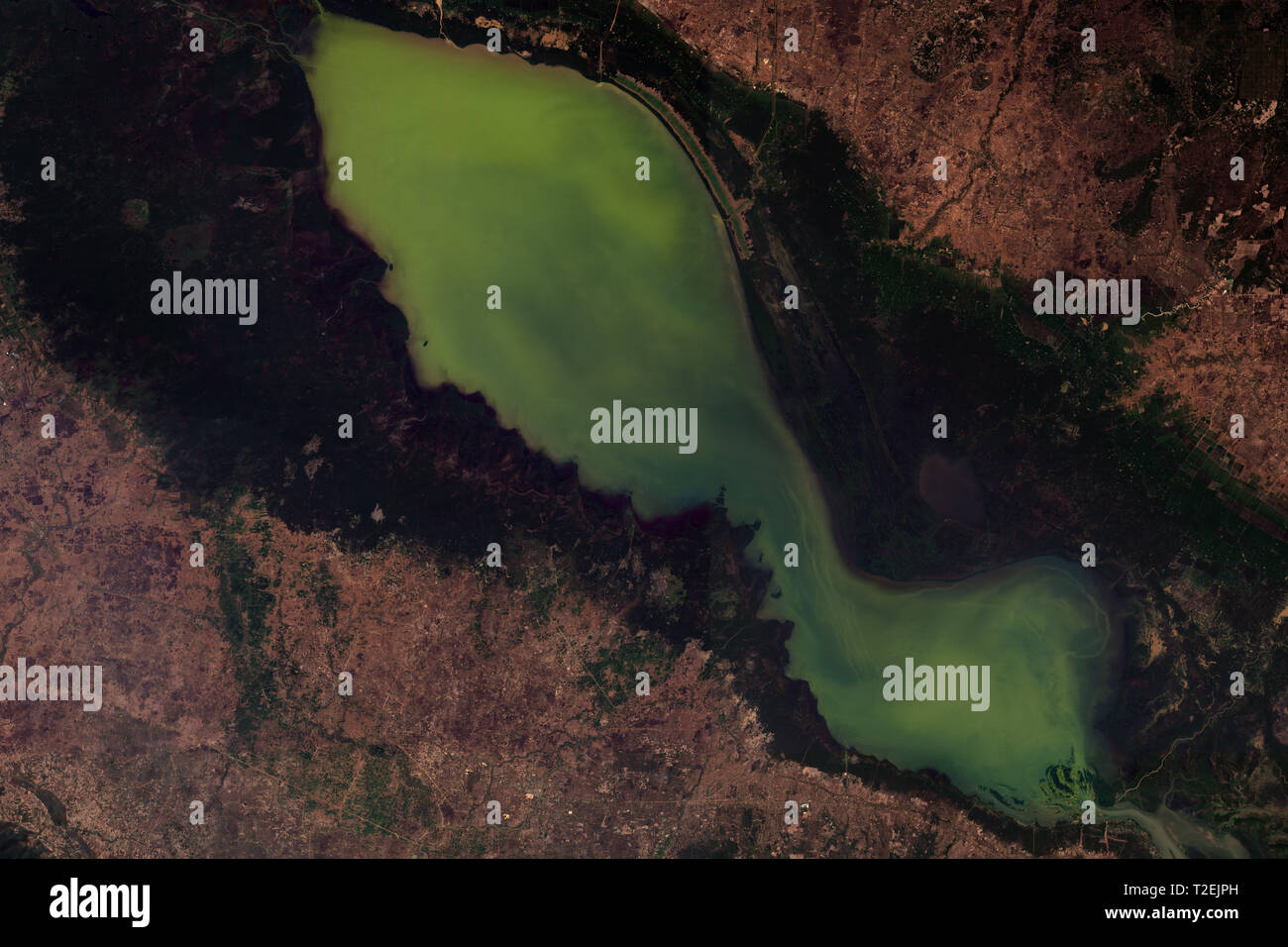 Tonle Sap in Cambodia seen from space - contains modified Copernicus Sentinel Data (2019) Stock Photo
