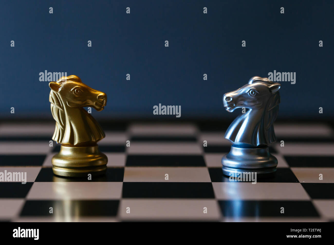 Closeup golden and silver horse knights places against each other on chessboard against gray background Stock Photo