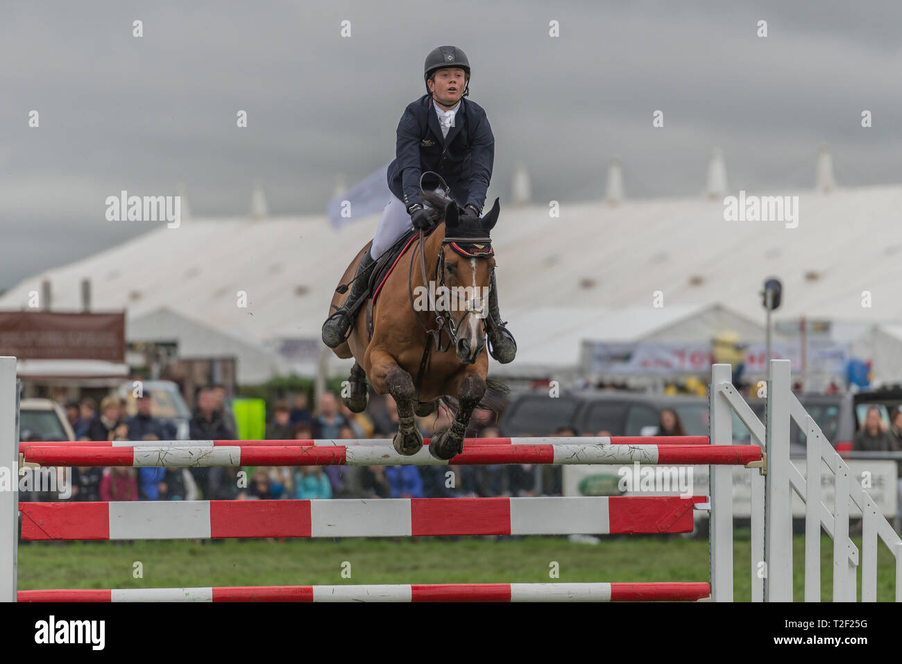 Edenbridge and Oxted Show Showjumping - Stock Image