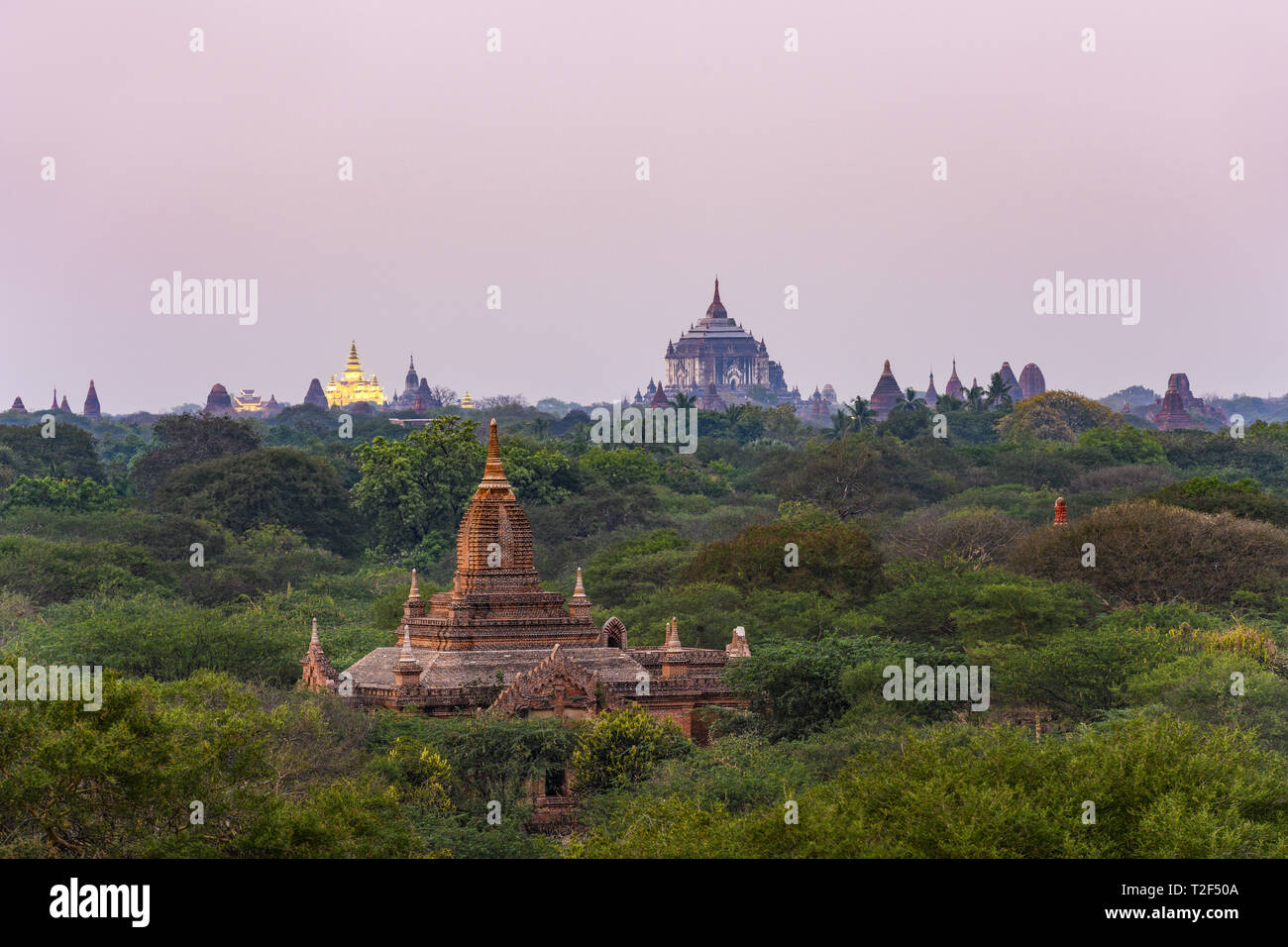 Stunning view of the beautiful Bagan Archaeological Zone with the Thatbyinnyu Temple and the illuminated Golden Palace in the background during sunset Stock Photo