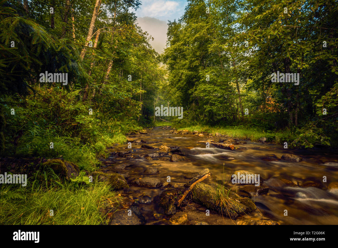 River flowing right through a forest with a mountain peak in the background covered in fog in the morning at sunrise Stock Photo