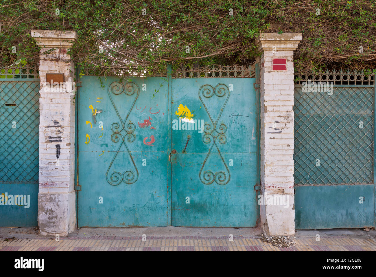Background of three green old weathered grunge antique wrought iron gates with floral pattern ornaments and two white bricks columns - Stock Image