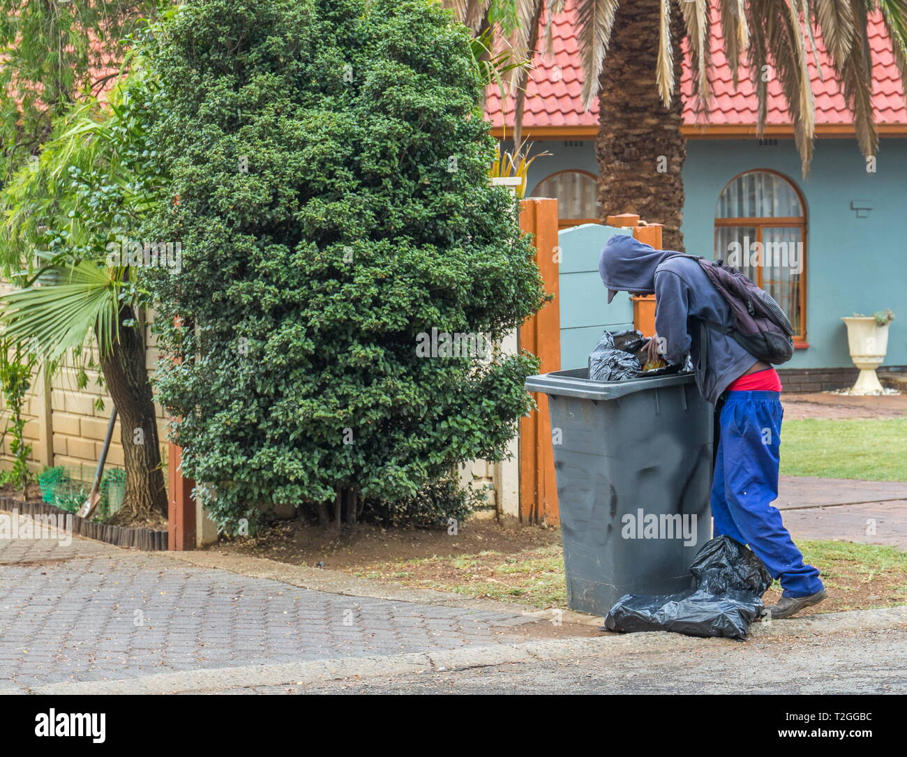Johannesburg, South Africa - unidentified unemployed homeless man picks through a residential refuse bin for food or usable items - Stock Image