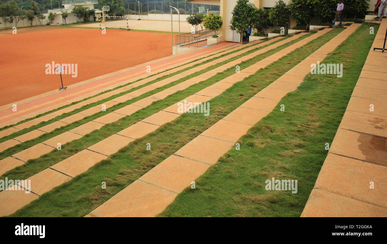 Wide School Steps with Grass and trees in Excel Public School Mysore - Stock Image