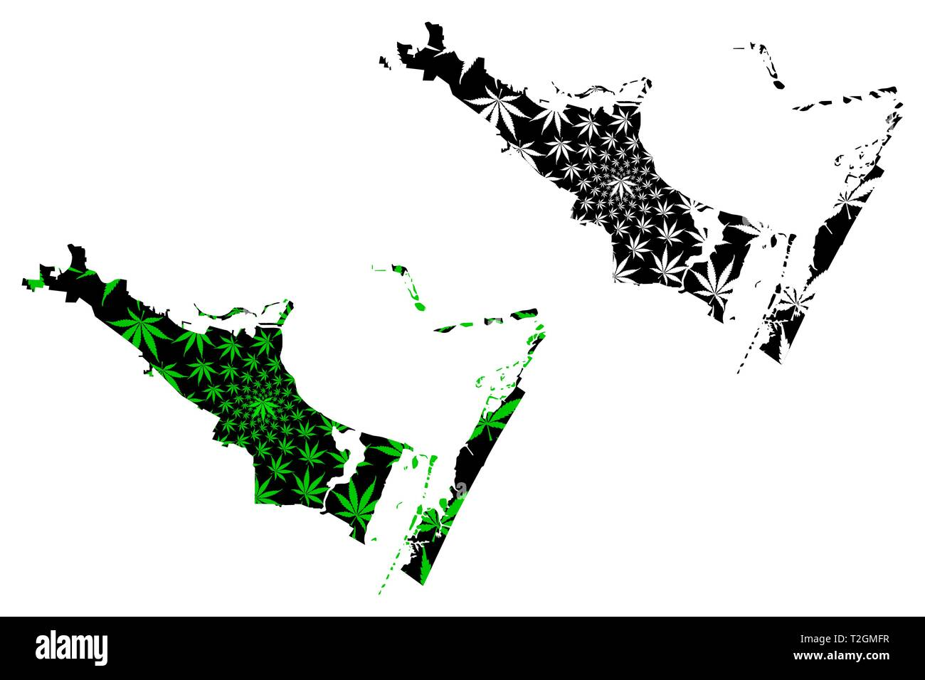Corpus Christi city (United States of America, USA, U.S., US, United States cities, usa city)- map is designed cannabis leaf green, City of Corpus Chr - Stock Image