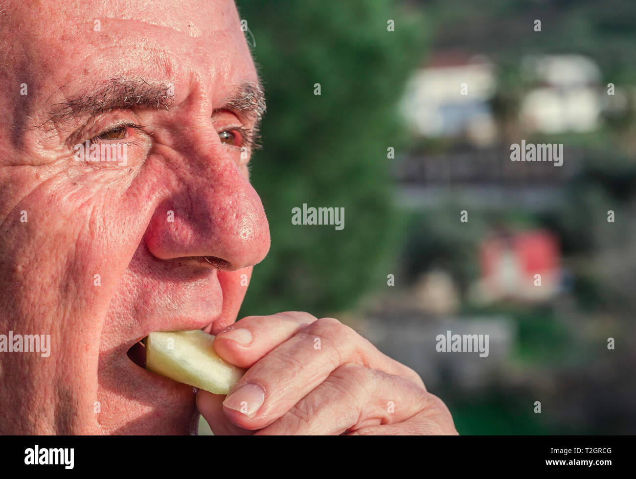 Close-up portrait of a senior of 70-79 years eating apple at outdoor, healthy lifestyle concept - Stock Image