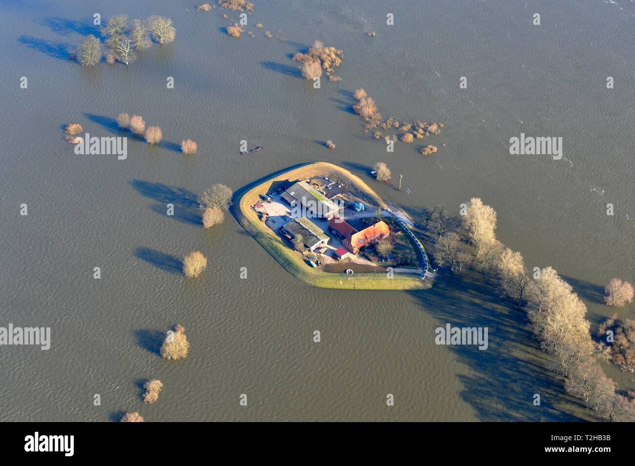 Farm at Heisterbusch surrounded by the Elbe flood, aerial view, Bleckede, Lower Saxony, Germany Stock Photo