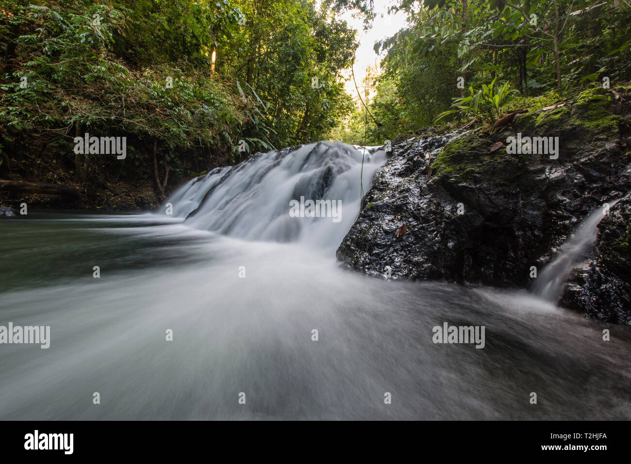 Slow motion blur of waterfall in Corcovado National Park, Osa Peninsula, Costa Rica, Central America - Stock Image