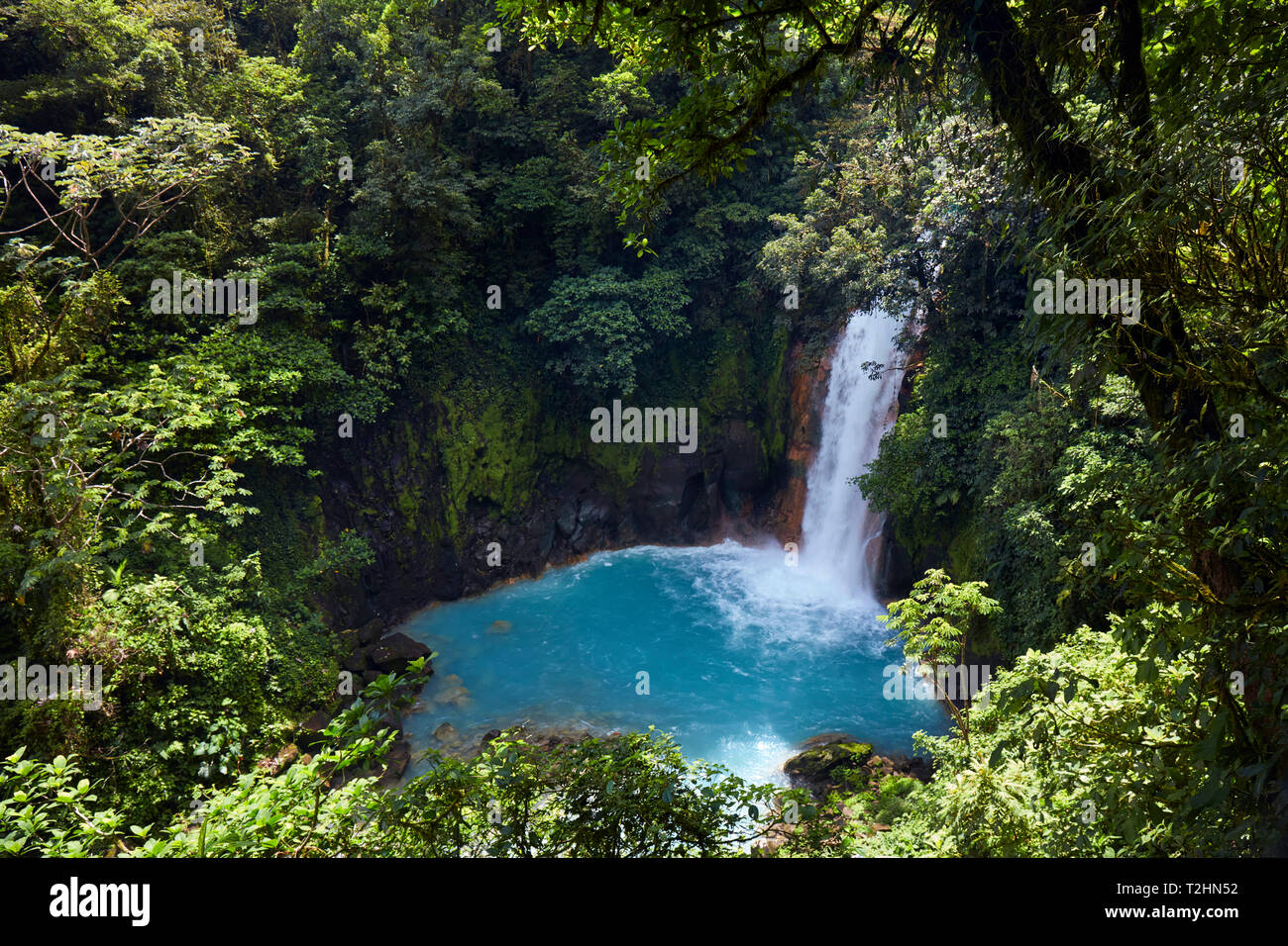 Rio Celeste in the Tenorio Volcano National Park  shows a bright blue colour like no other river due to a chemical reaction, Tenorio, Costa Rica - Stock Image