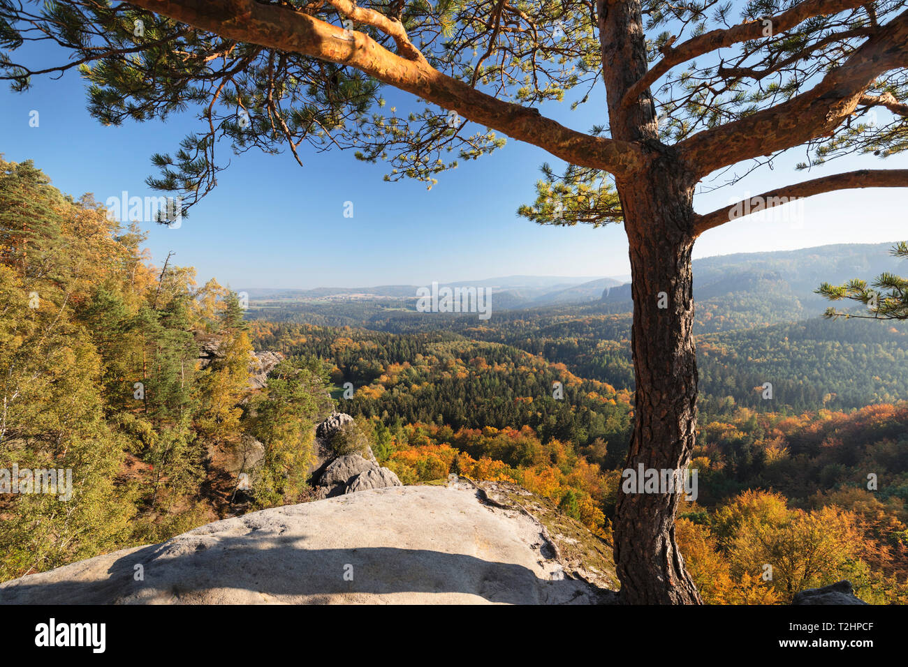 View from Schrammsteine rocks to Hohe Liebe mountain in Elbe Sandstone Mountains, Germany, Europe - Stock Image