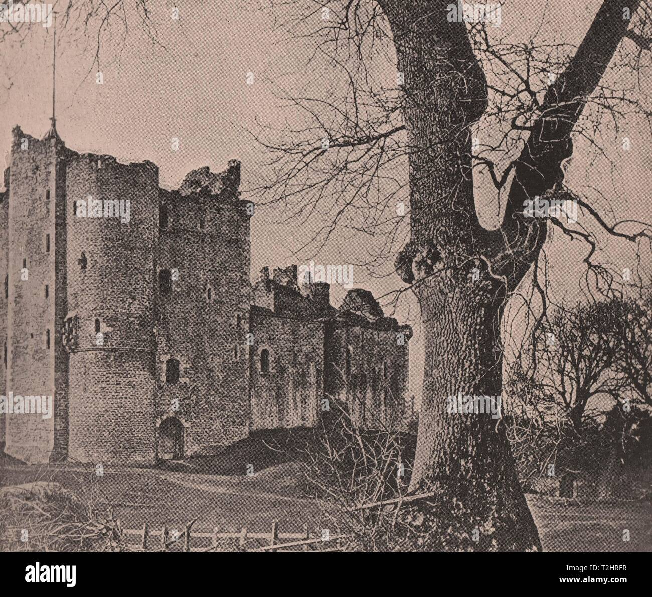 Doune Castle and Gallows tree - Stock Image