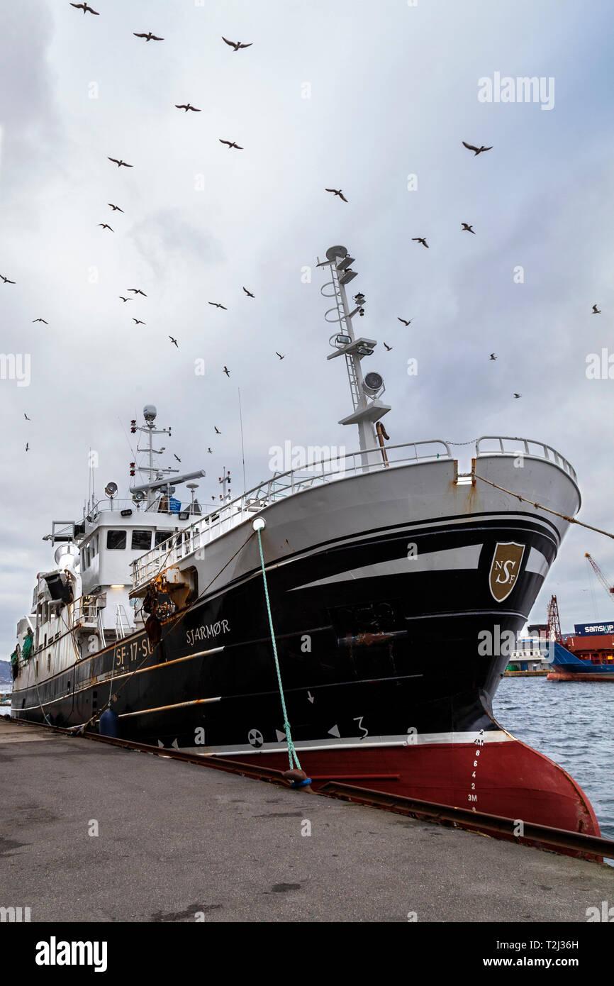 Old fishing vessel Sjarmor (Sjarmør, built 1993) moored at Damsgaardsundet, in the port of Bergen, Norway. - Stock Image