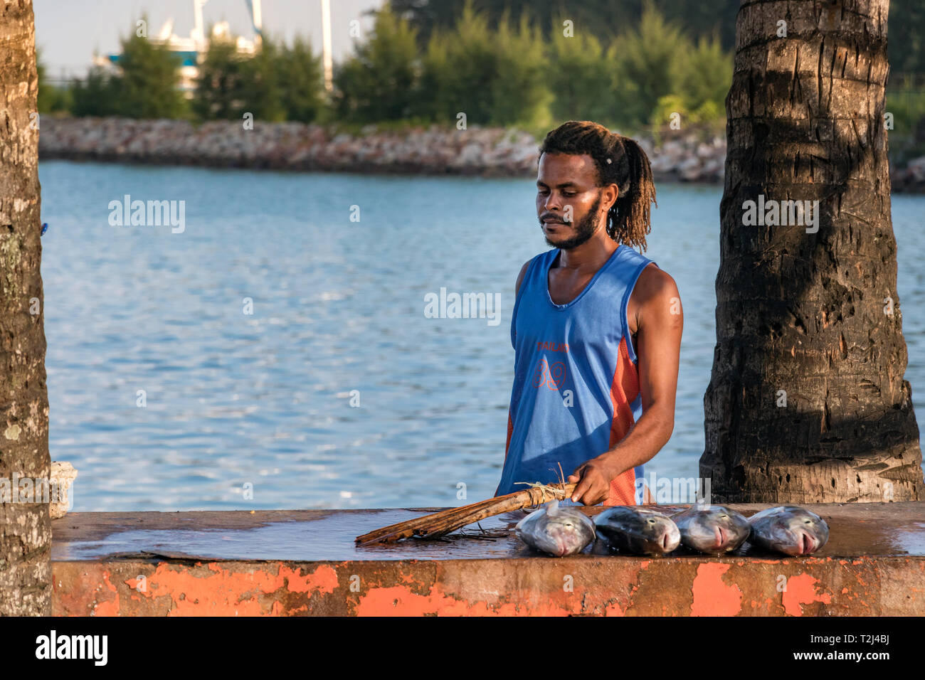 Praslin, Seychelles - February 5th, 2019: Portrait of a local fisherman selling fresh fish on a table next to the sea in Praslin, Seychelles. - Stock Image