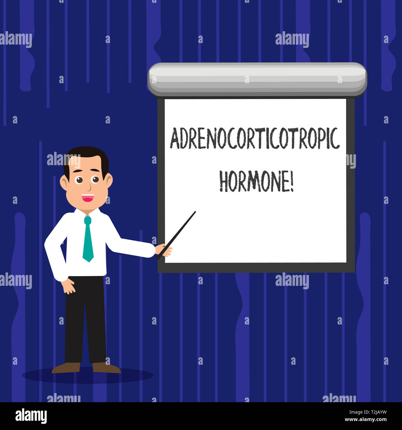 Text sign showing Adrenocorticotropic Hormone. Business photo text hormone secreted by pituitary gland cortex Man in Necktie Talking Holding Stick Poi - Stock Image