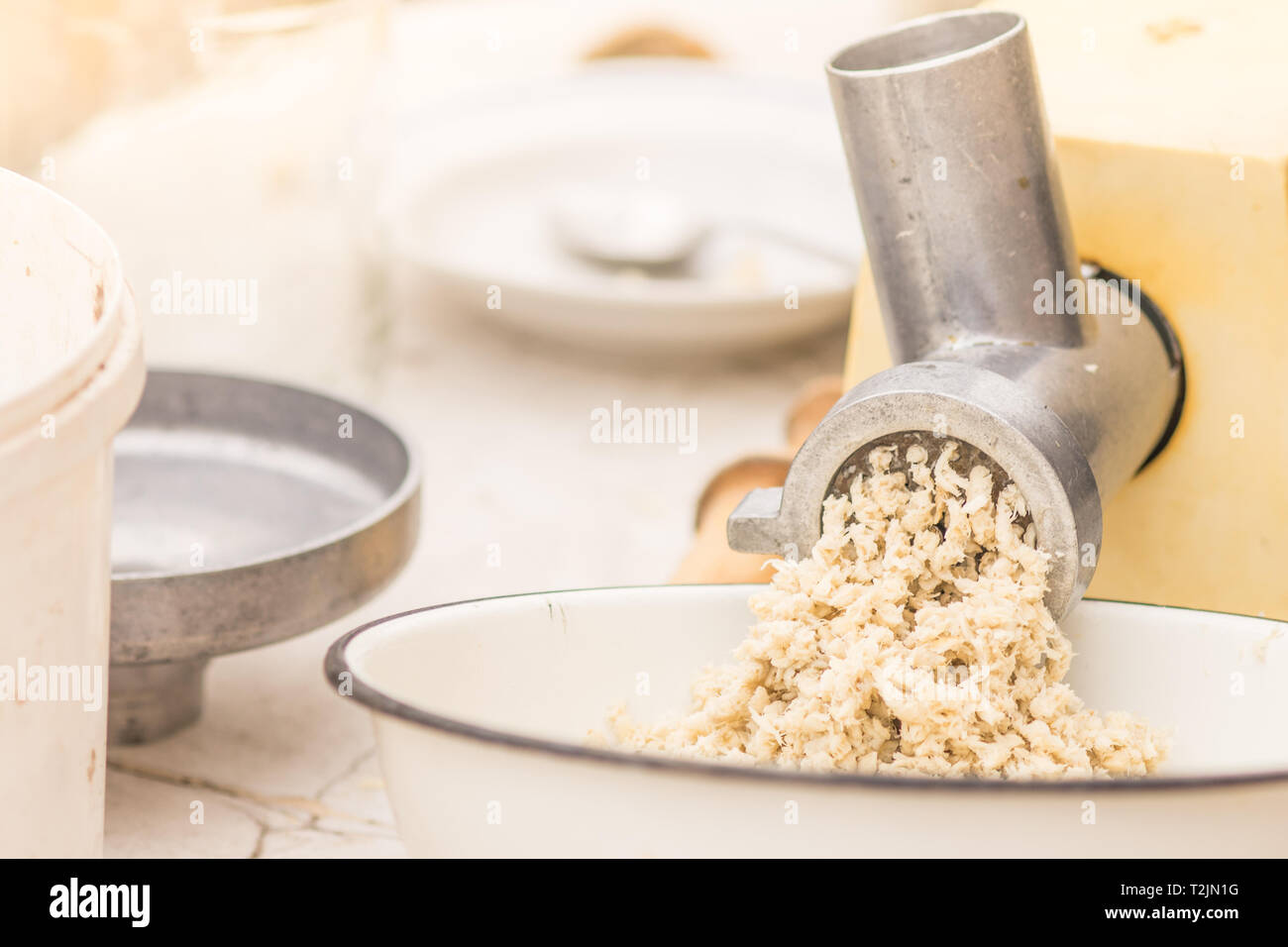 The process of making mashed horseradish root - Stock Image
