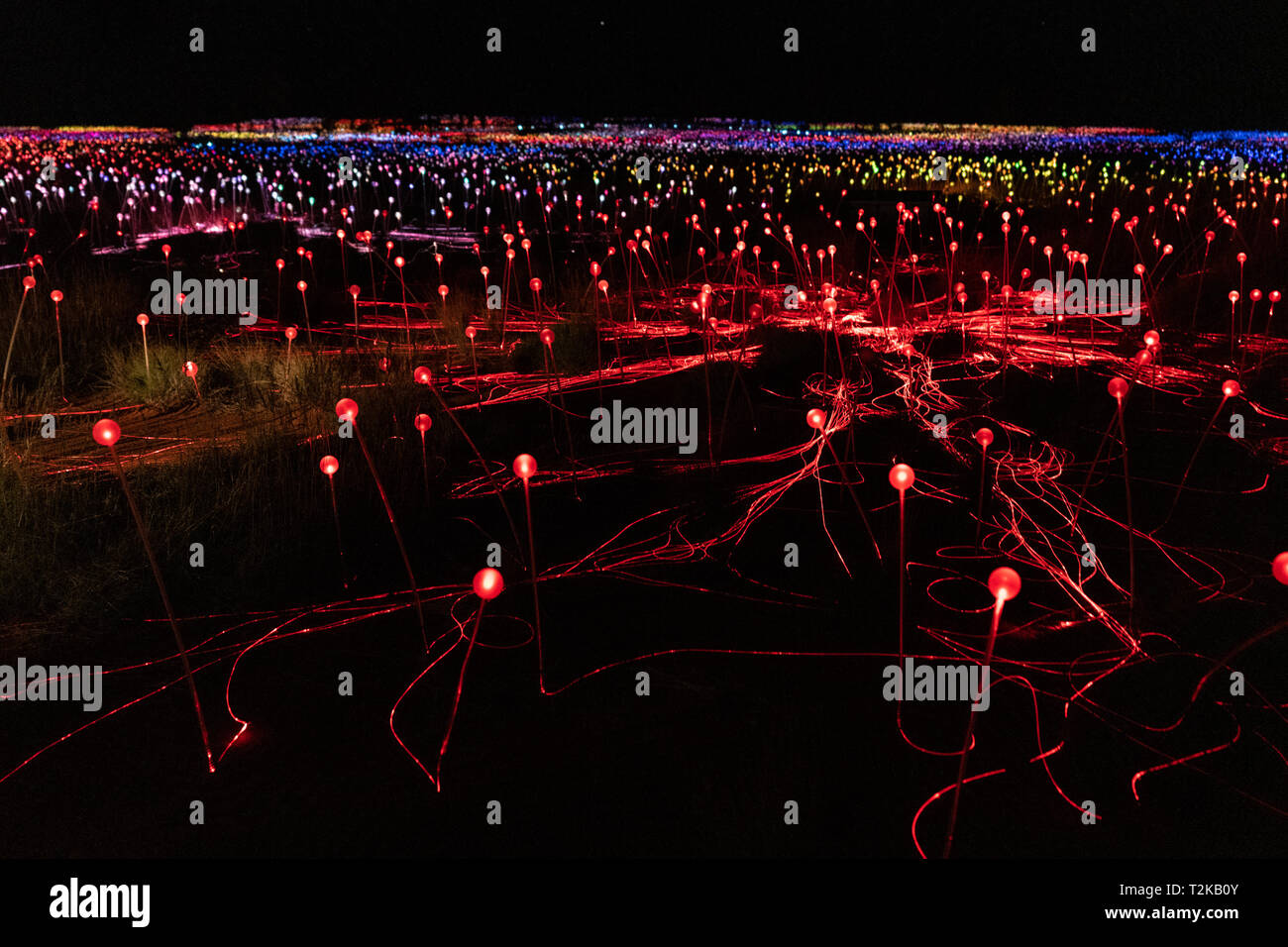 Field of light at night with mostly red lights in NT Australia - Stock Image