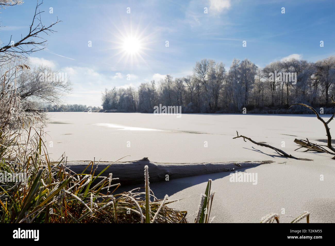 Winter am Altwasser - Stock Image