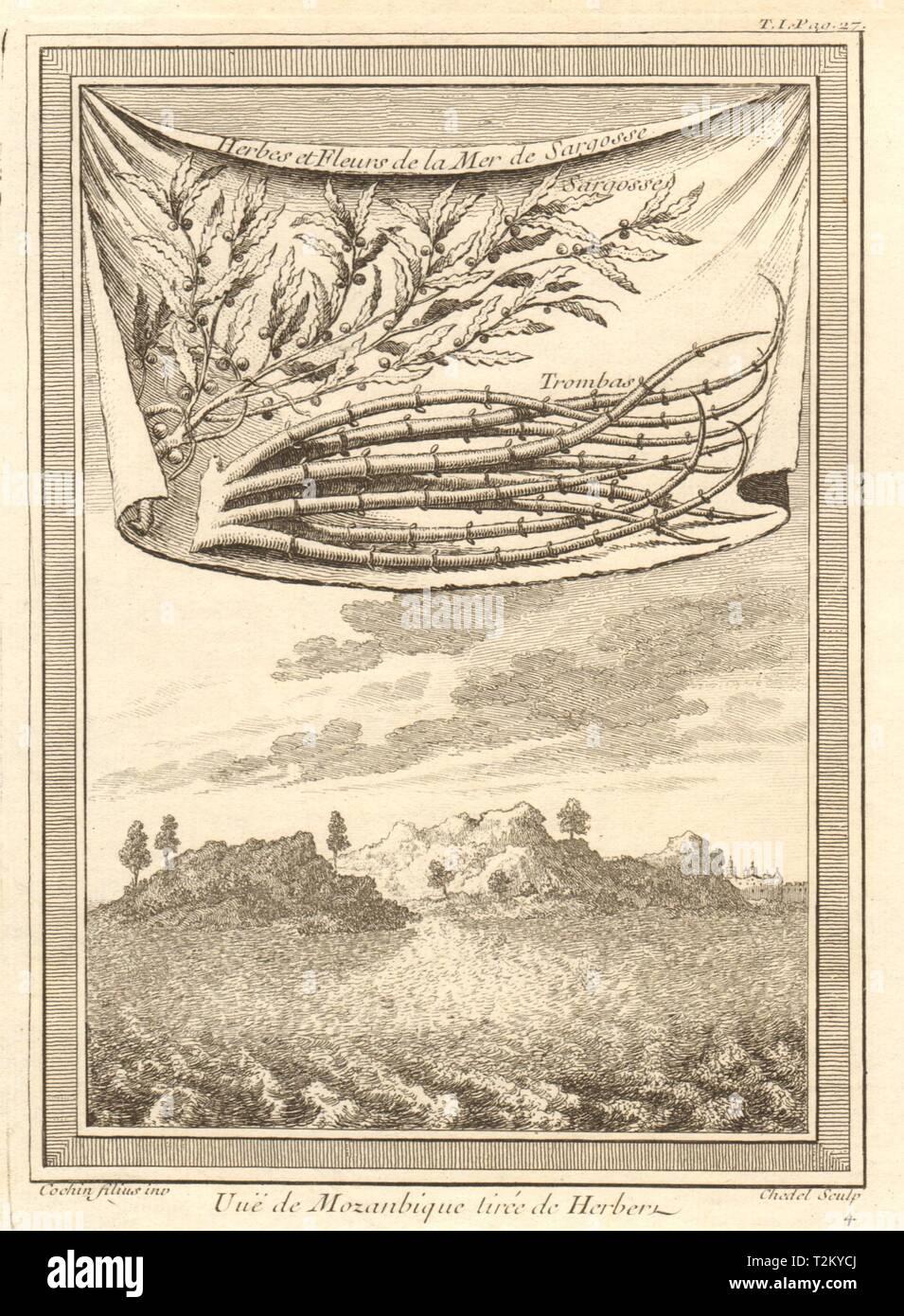 'Vue de Mozanbique'. Mozambique island, from Herbert. Sargassum seaweed 1746 - Stock Image