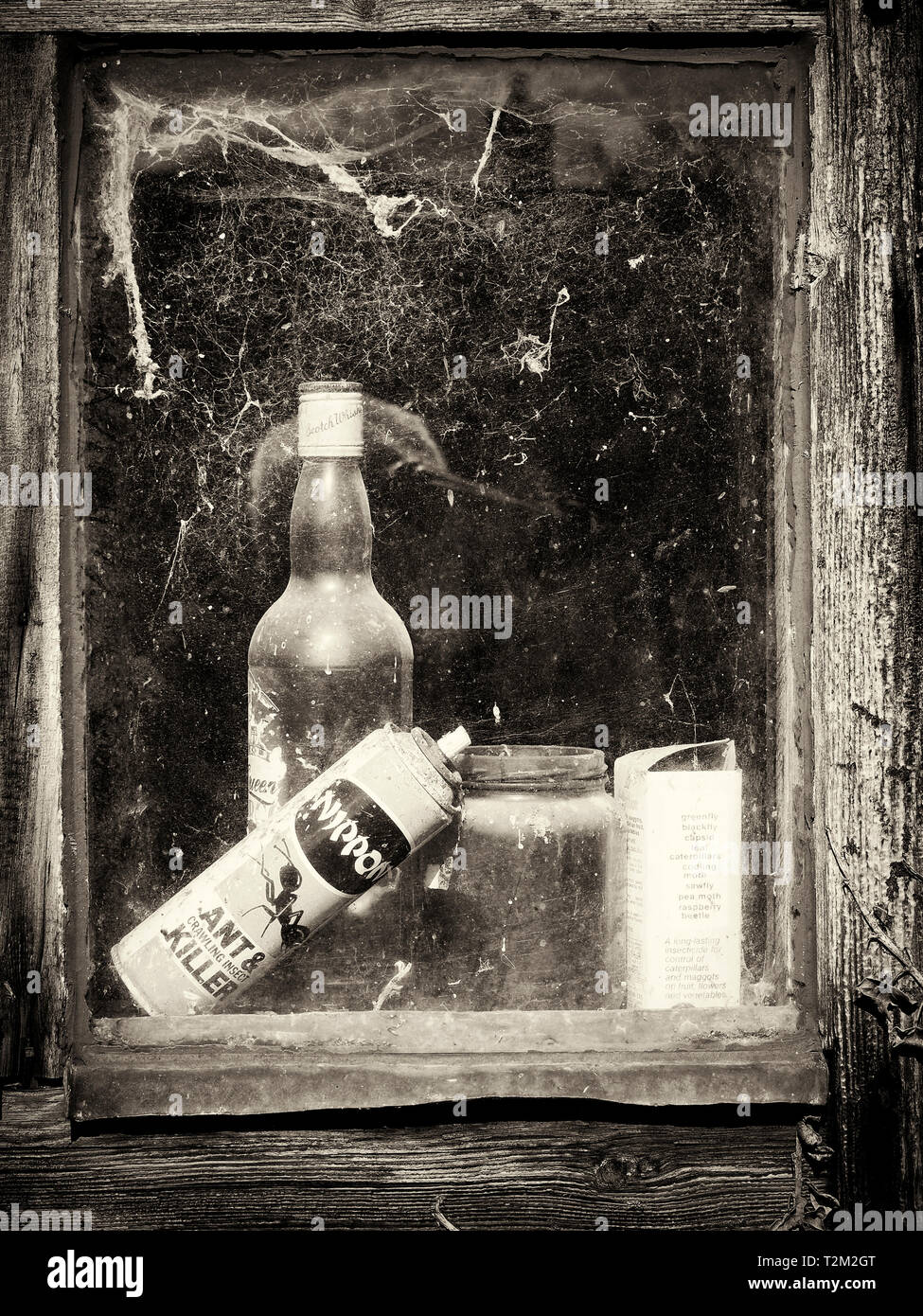 A glimpse through the window of an old garden shed with abandoned bottles and cans seen through cobweb covered glass. Stock Photo