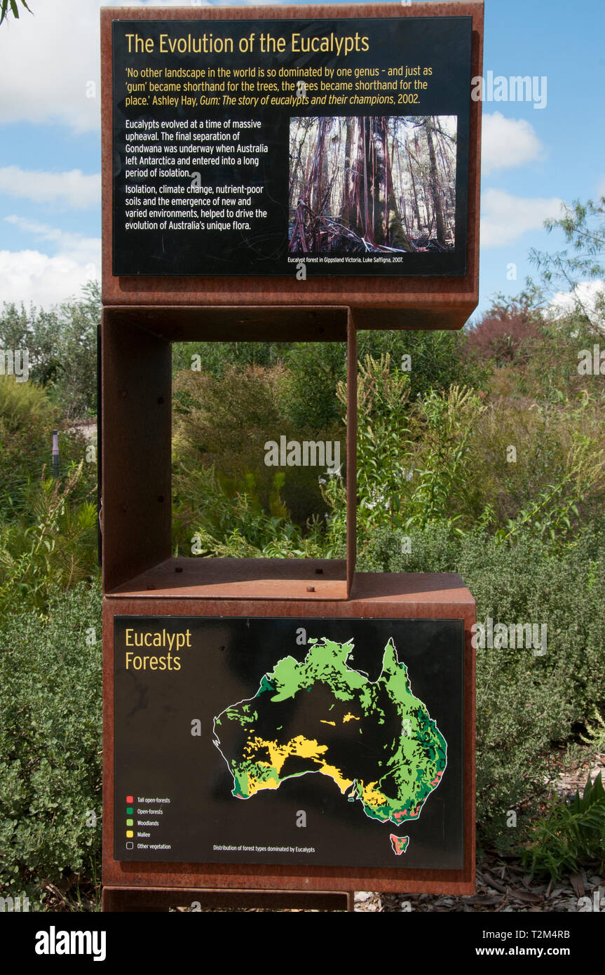 Information signs explain the evolution and ecology of eucalypts at the Australian Garden, Royal Botanic Gardens, Cranbourne, Victoria, Australia Stock Photo