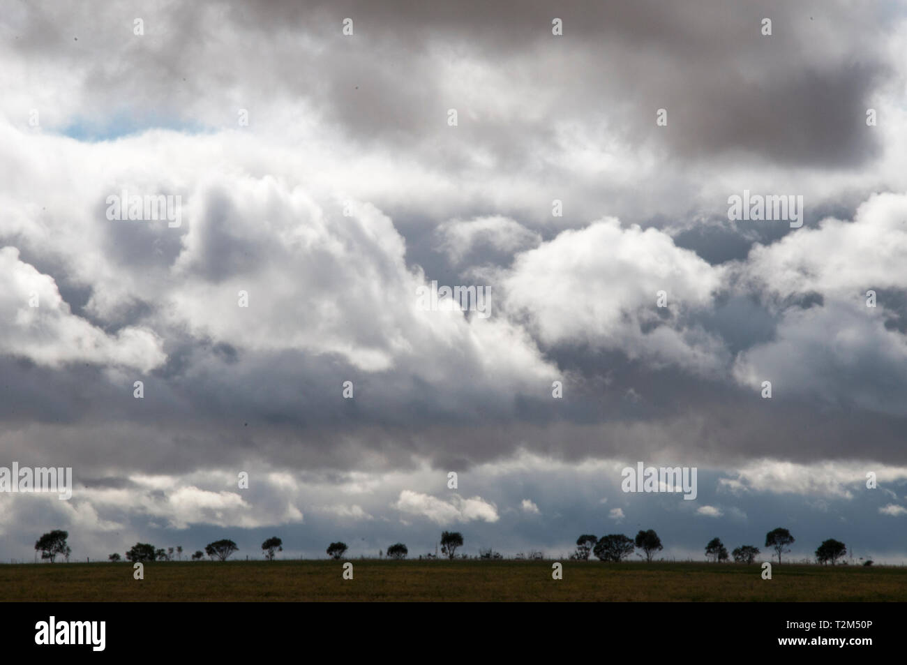 Squally skies in the Wimmera, western Victoria, Australia Stock Photo