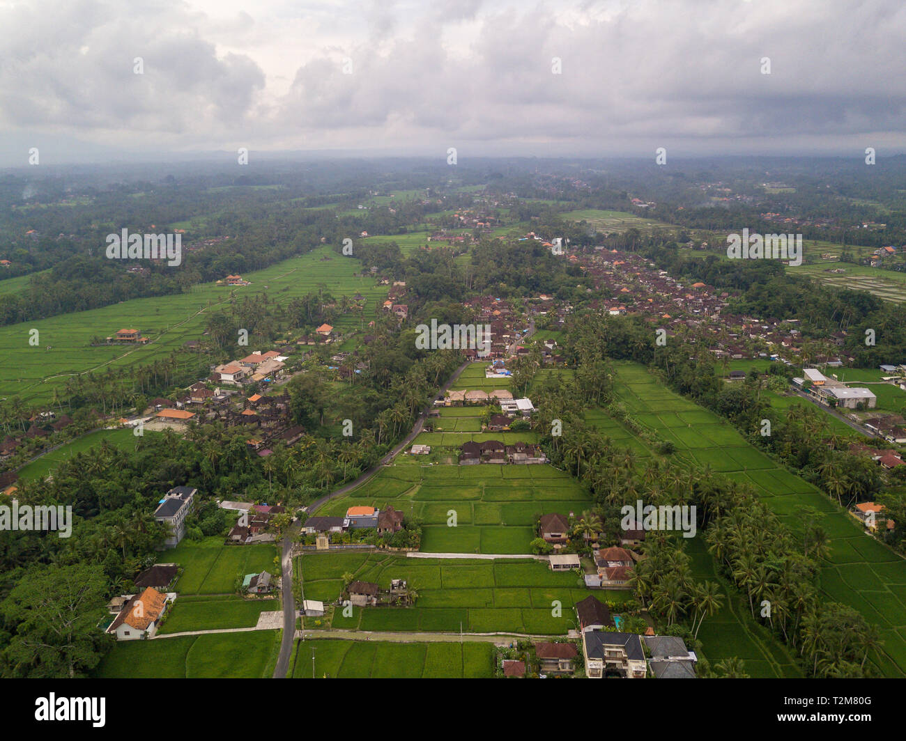 Aerial view of Ubud countryside in Bali, Indonesia - Stock Image