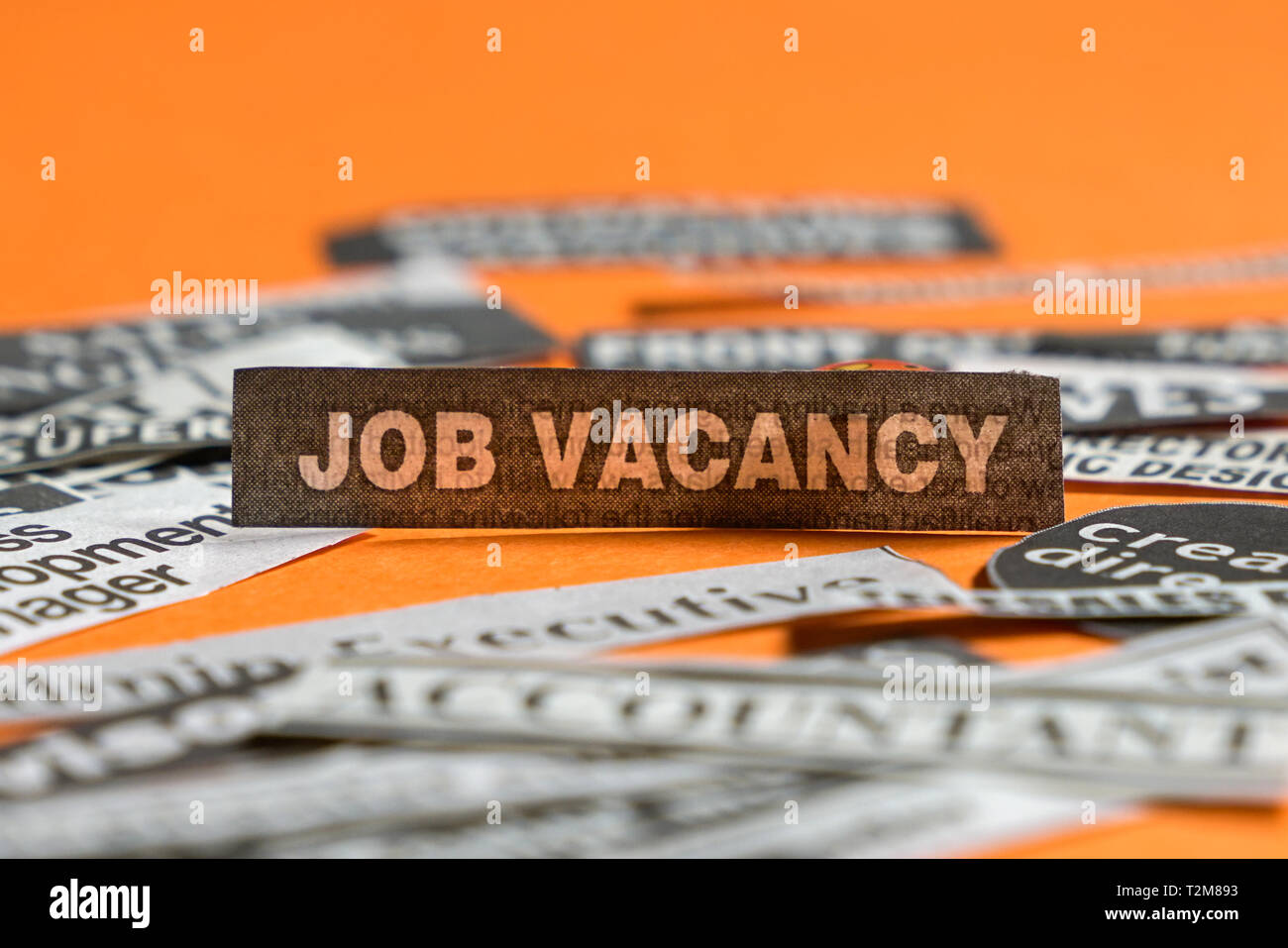 Jobs or careers concept: multiple job titles or occupations cut off from newspaper with Job Vacancy a the centre of the pile - Stock Image