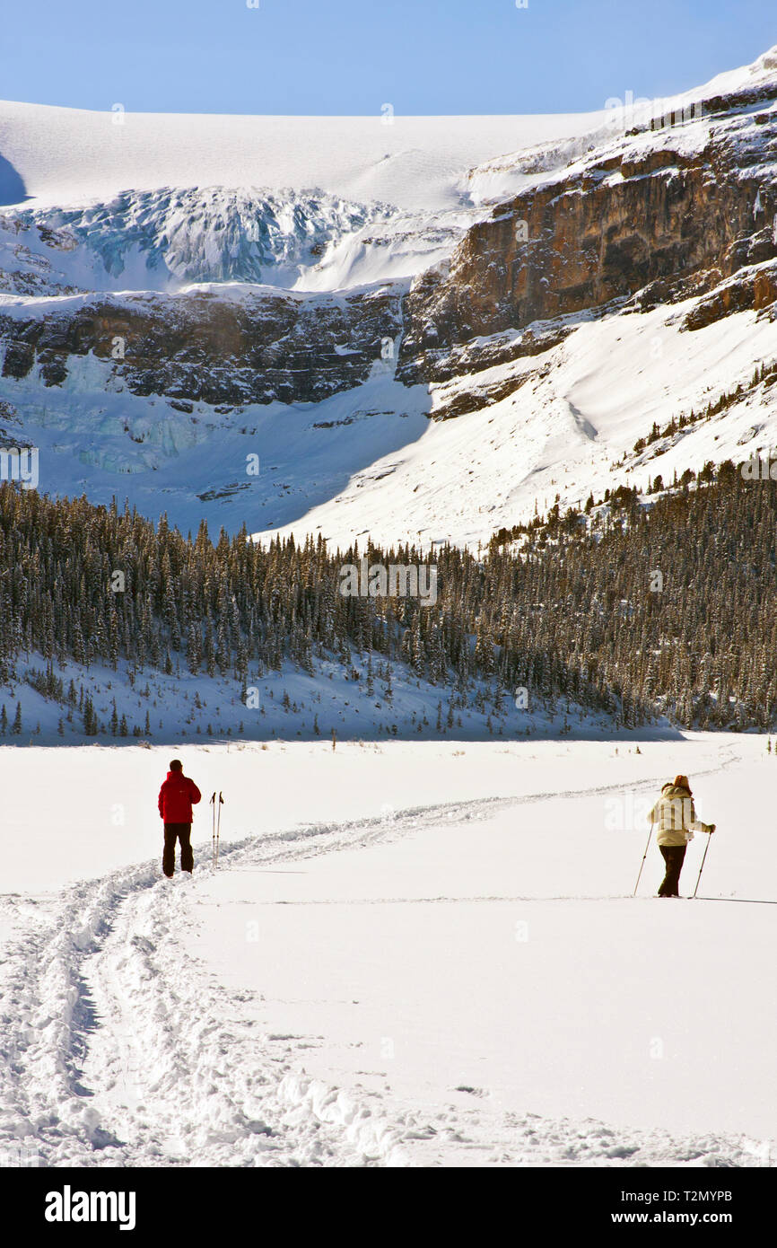 Cross Country Skiing on Bow Lake Icefields Parkway, Alberta Stock Photo