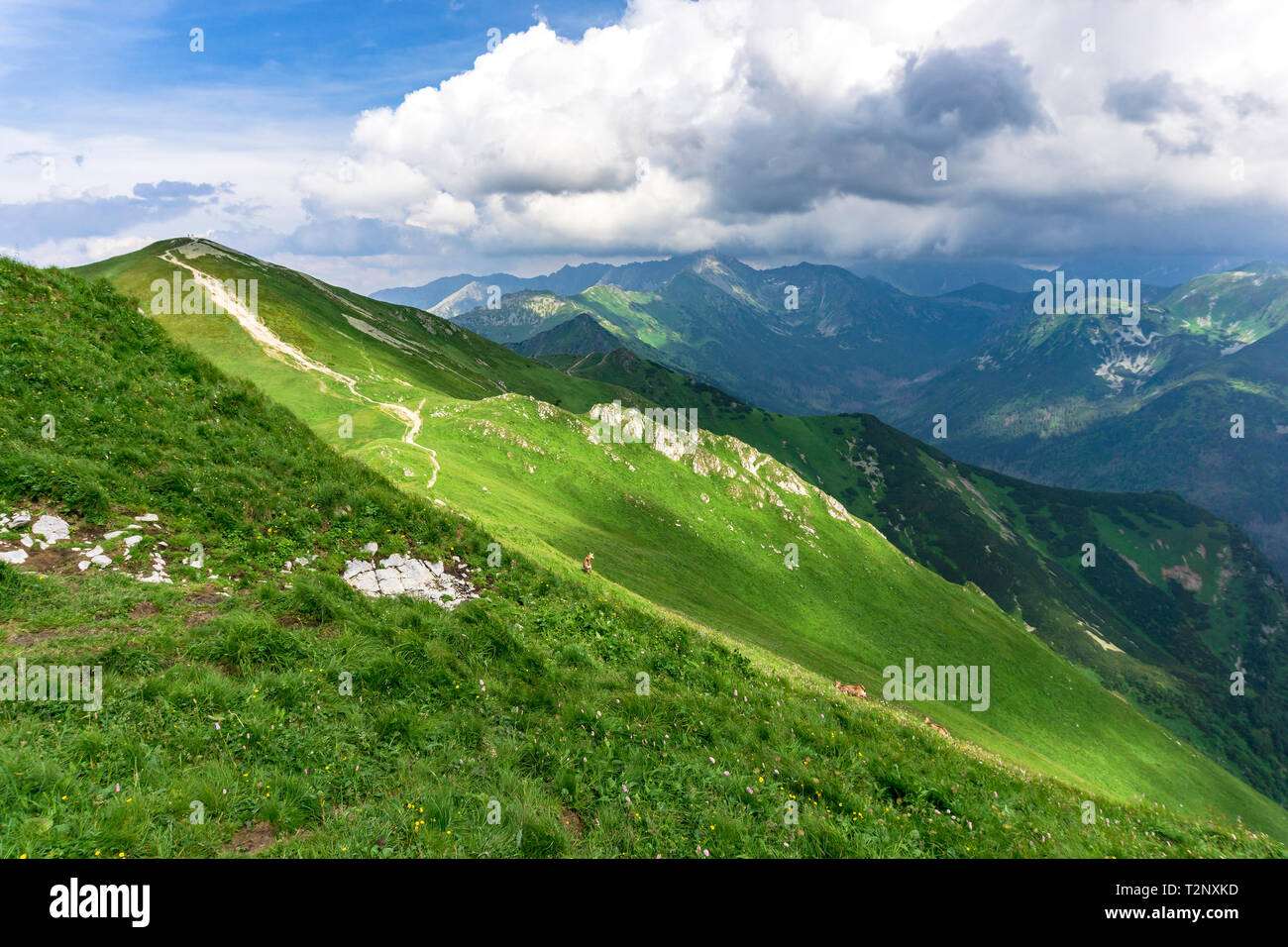 Whirling clouds over the peaks of the Tatra Mountains in June. - Stock Image