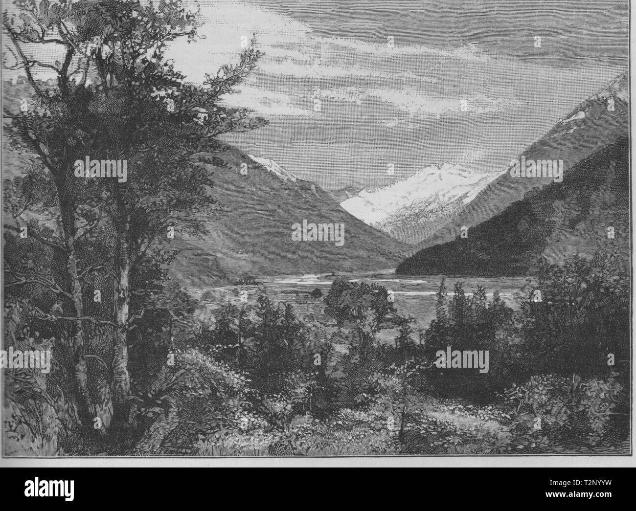 The Bealey River, North Branch. Springfield/West Coast. New Zealand 1890 print - Stock Image