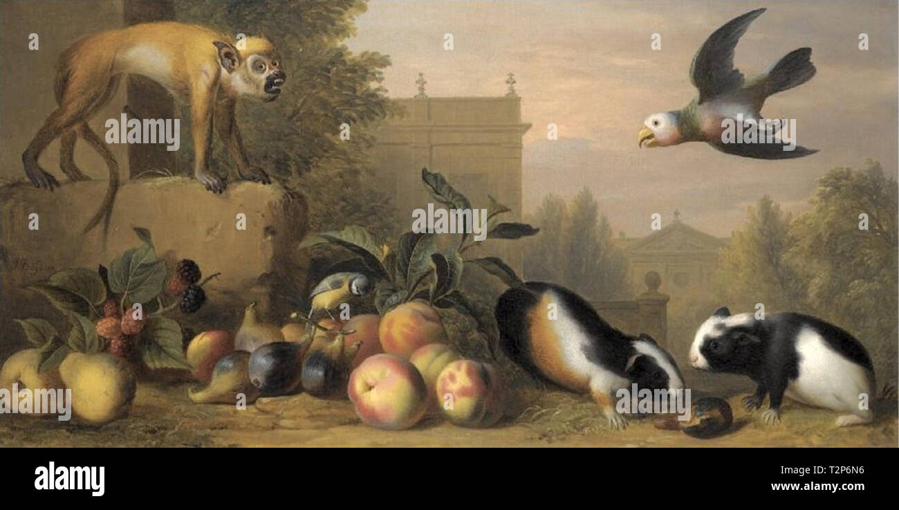 A menagerie of animals including a monkey, guinea pigs and parrot alongside fruit - Stock Image