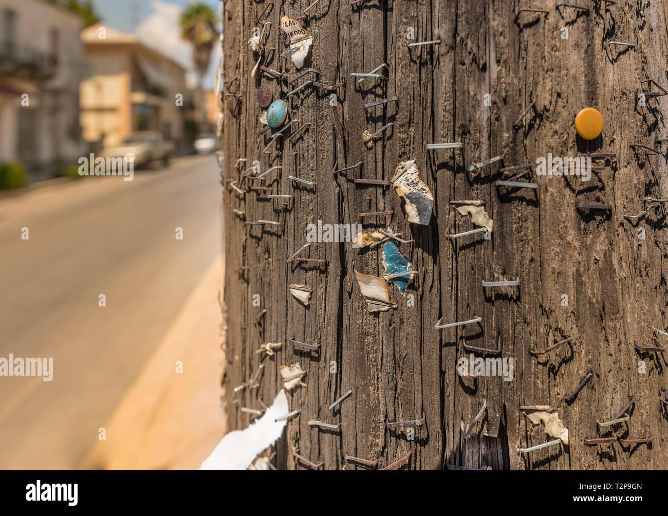 many staples on a telephone mast - Stock Image