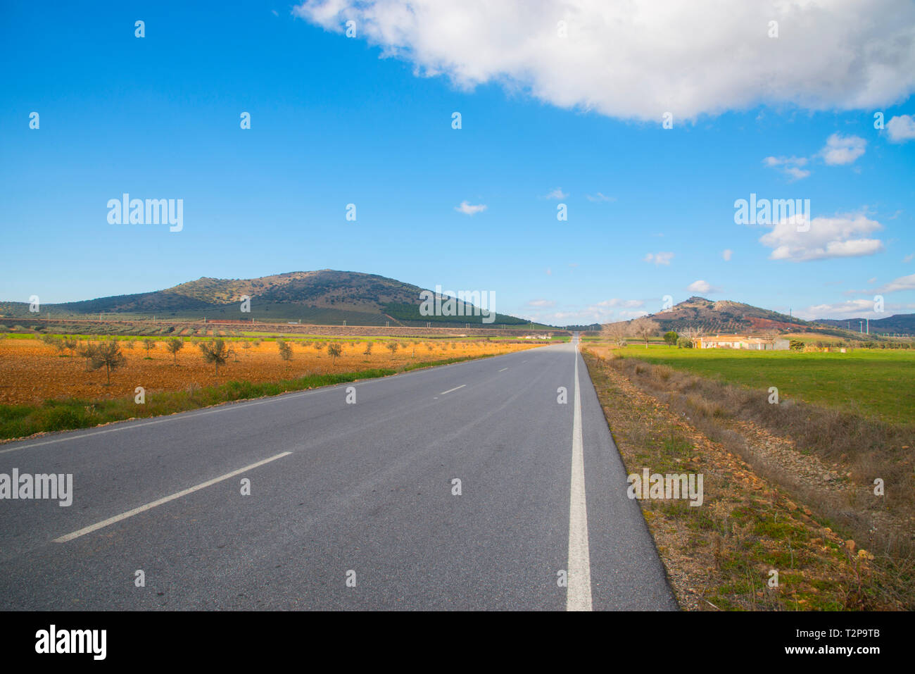 Road. Fuente El Fresno, Ciudad Real province, Castilla La Mancha, Spain. Stock Photo