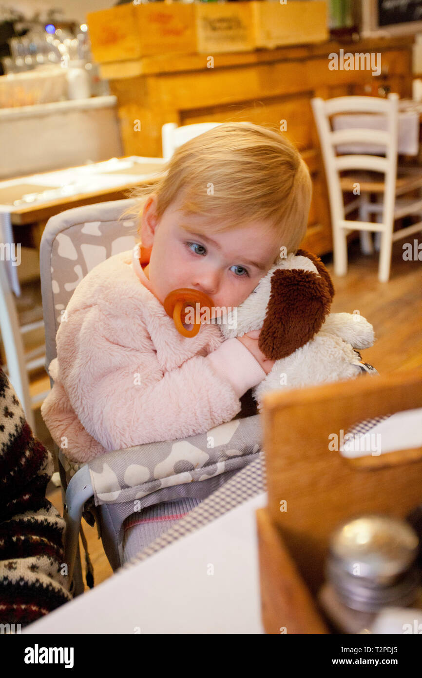 Baby girl with dummy cuddling a fluffy dog - Stock Image