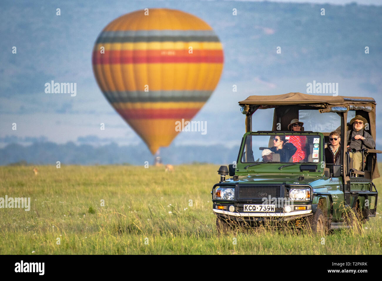 A hot air balloon lands in the background as tourist drive by in a game viewer in Maasai Mara National Reserve, Kenya - Stock Image