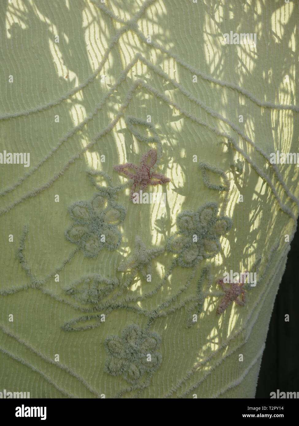 An outline of tree trunks shining through an old embroidered bedspread, recycled to wrap round a fruit tree; frost protection in an English garden. - Stock Image