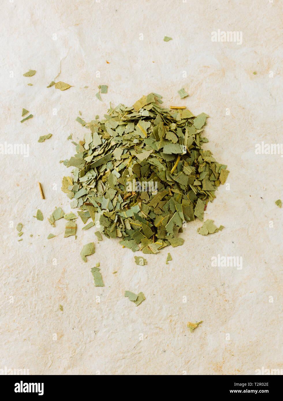 Pile of dried eucalyptus leaves ( Eucalyptus globulus ) isolated on paper background - Stock Image