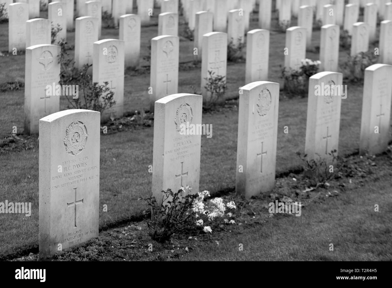 Commonwealth War Cemetery Oosterbeek Arnhem Holland Netherlands 2 - Stock Image