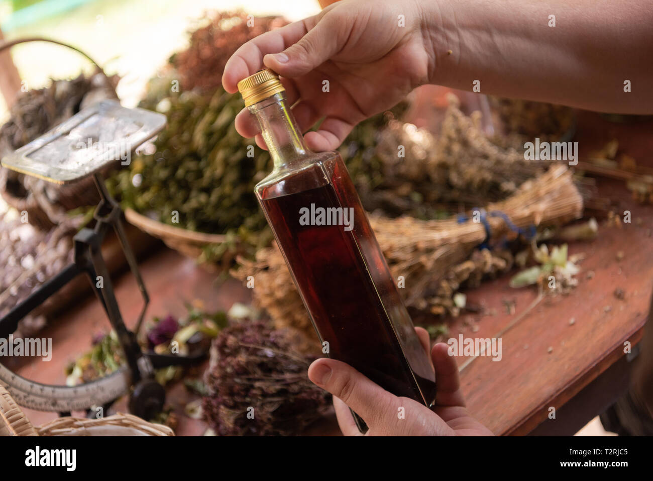 tincture or potion bottle in hand of herbalist bunch of dry healthy