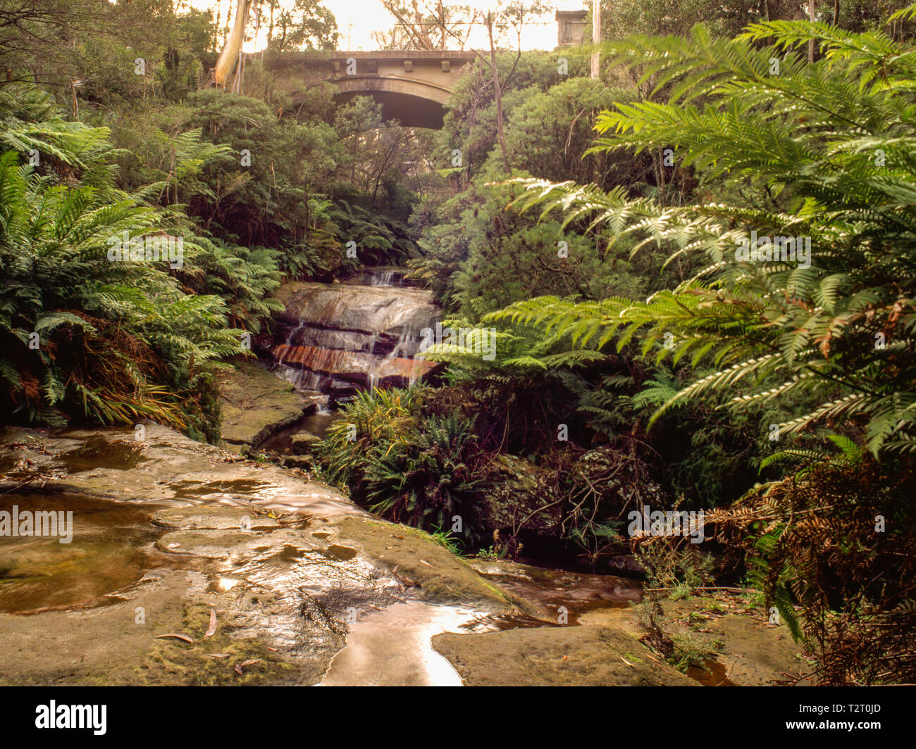 Road bridge over Leura Falls, New South Wales - Stock Image