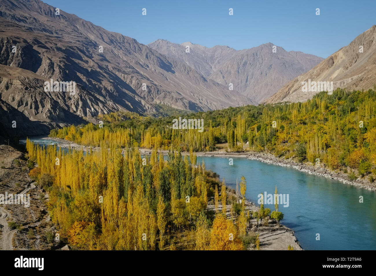 Autumn view of Ghizer river flowing through forest in Gahkuch, surrounded by mountains. Gilgit Baltistan, Pakistan. - Stock Image