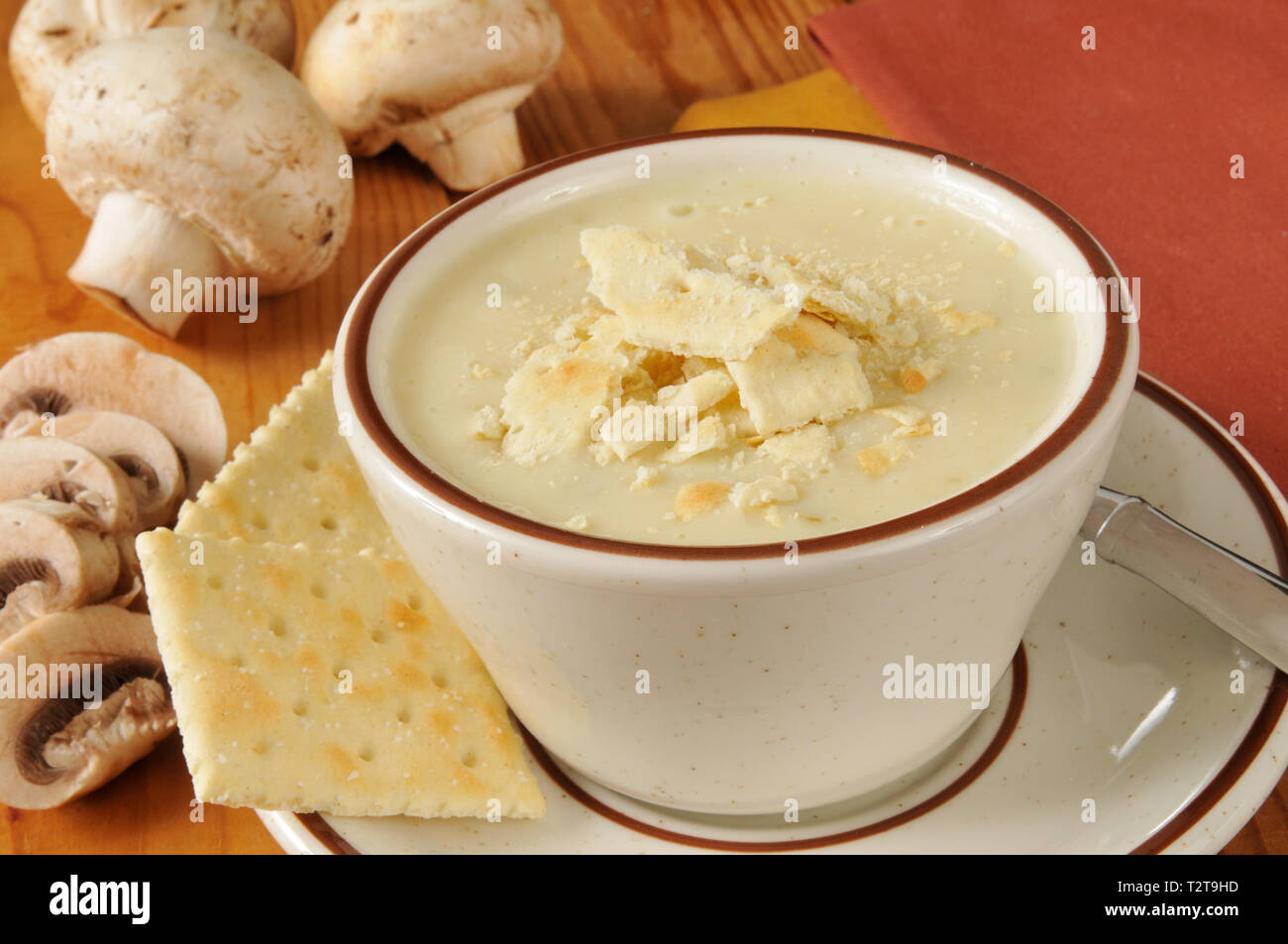 A cup of cream of mushroom soup with saltilne crackers - Stock Image