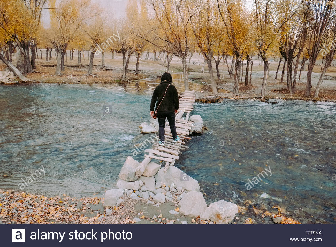 A young Asian woman traveller crossing a small wooden bridge over flowing Hargisa river. Autumn scene in Skardu. Gilgit Baltistan, Pakistan. - Stock Image